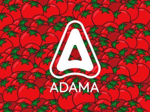 Adama – Mastercop
